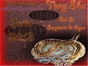 Tong Shu Junio 2013