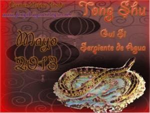Tong Shu Mayo 2013