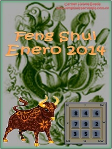 Portada Feng Shui Enero 2014